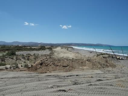 Η αρχή του δρόμου, κοντά στο λιμνίο της Καταλυκής, WWF Ελλάς / Θ. Γιαννακάκης