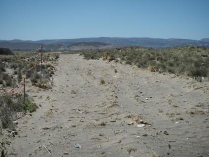 Οριοθέτηση και δημιουργία δρόμου με εκχέρσωση, WWF Ελλάς / Θ. Γιαννακάκης